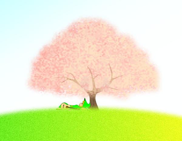 Sakuranokinosia